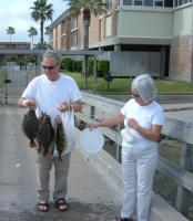 Click to enlarge image  - The Duennebiers of Germany - Nice Catch of Flounders