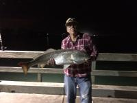 "Click to enlarge image Richard Blemmel caught this 39"" red on Nov.4 and released it. - Good Fishing -"